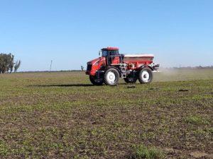 Encalado en maní: una solución para los suelos, protección para los cultivos y más rendimiento